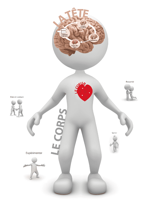 Tete - corps - coeur